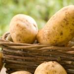 7. Niederdorfer Kartoffelfest